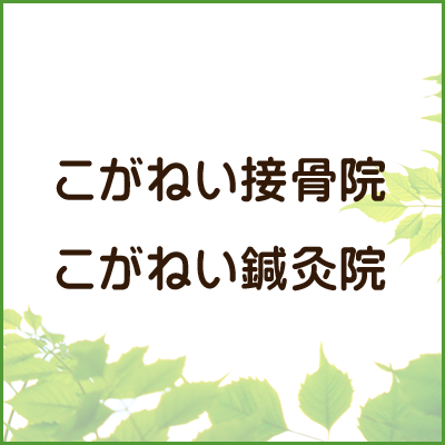 $logo_alt
